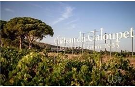 LVMH集团收购法国酒庄 正式进军桃红葡萄酒领域